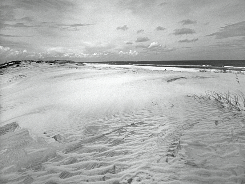 Dune 2 - Outer Banks : Landscape : Bruno Mahlmann Photography