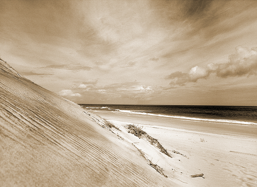 Sepia Dune - Outer Banks : Landscape : Bruno Mahlmann Photography